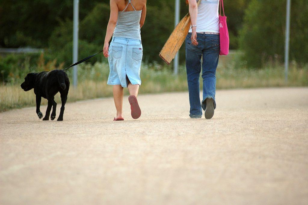 """Întrebări și răspunsuri: Este permisă circulația persoanelor care nu au împlinit vârsta de 18 de ani în afara locuinței/gospodăriei, pentru activităţile """"deplasare scurtă, lângă domiciliu"""" și plimbarea zilnică a animalelor de companie?"""
