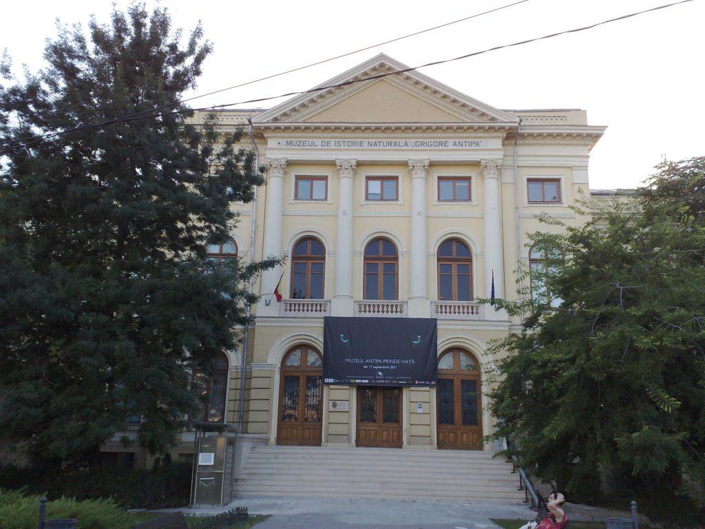 Muzeul Antipa își redeschide porțile cu ocazia zilei de 1 iunie,de ziua Internațională a Copilului