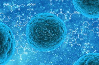 Ce au descoperit experții europeni în privința așa-zisei imunizări la COVD-19. Imunitatea la conoravirus dureaza 6 luni