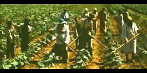 https://www.stiripesurse.ro/desi-trebuiau-tratati-in-germania-sezonieri-romani-suspecti-de-coronavirus-vor-fi-trimisi-inapoi-in-romania_1461878.html Se întorc românii, suspecți de Covid-19, aflați la muncă în Germania? Muncitorii sezonieri români suspecți decoronavirus, care au plecat înGermanialuna trecută, vor fi trimiși înapoi în România. Un grup de 200 de persoane urmează să fie trimis în țară cu autocarul, susțin surse citate de gazetadecluj.ro, după ce o cursă aeriană care trebuia să-i repatrieze, pe aeroportul de la Târgu Mureș, a fost anulată.