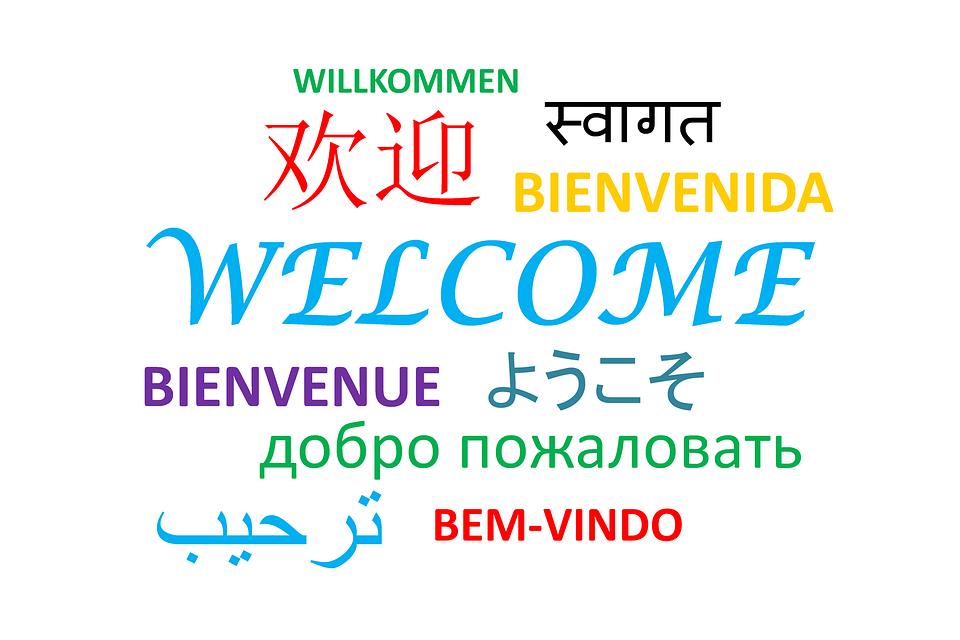 Elevii pot învăța, gratuit, o limbă străină